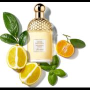 Aqua Allegoria Mandarine Basilic Guerlain - цена за 1 мл